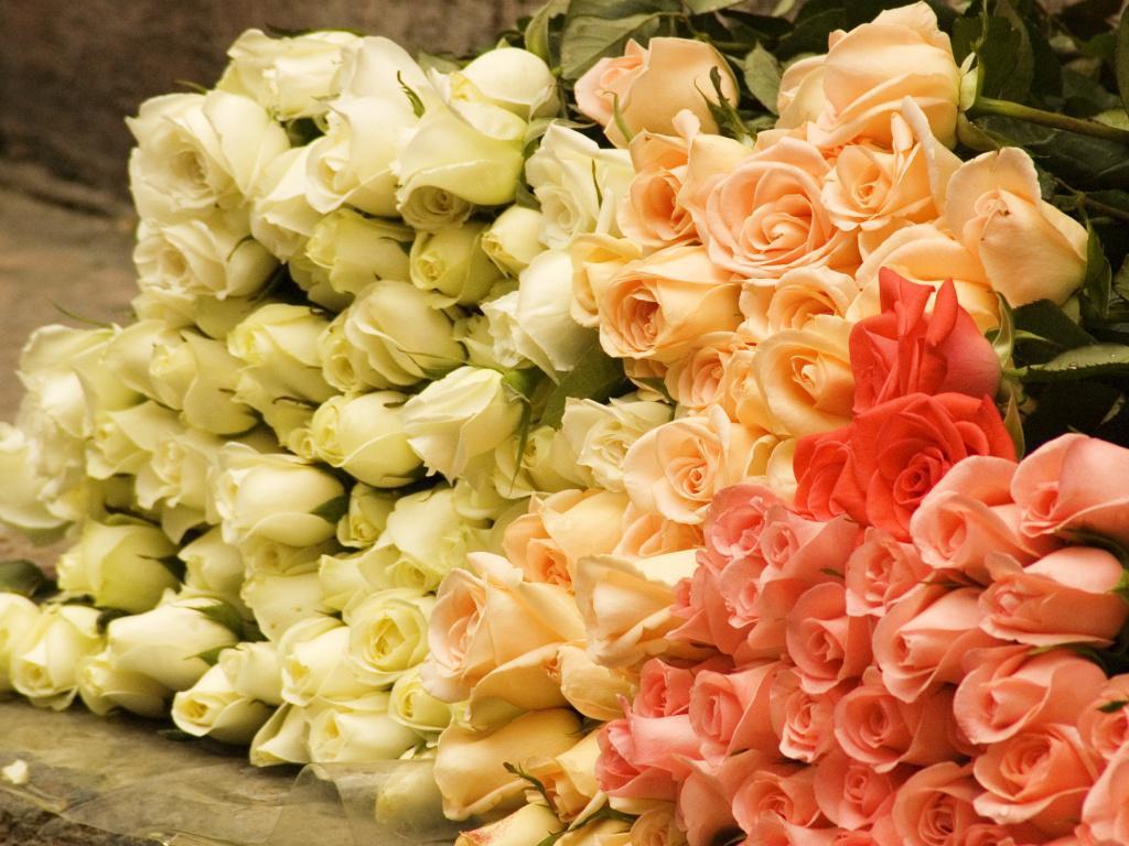 Картинки красивые букеты цветов огромные 5