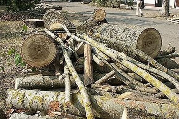 Шкафы деревянные для мелких деталей с