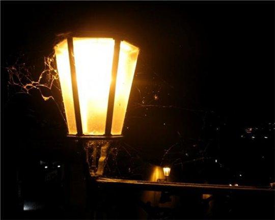 В Сочи установлены 1200 дополнительных уличных фонарей.  Об этом глава города Анатолий Пахомов сообщил сегодня на...