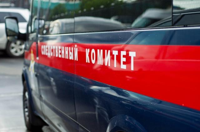 Напожаре врязанском поселке Мурмино погибли женщина идвое еедетей