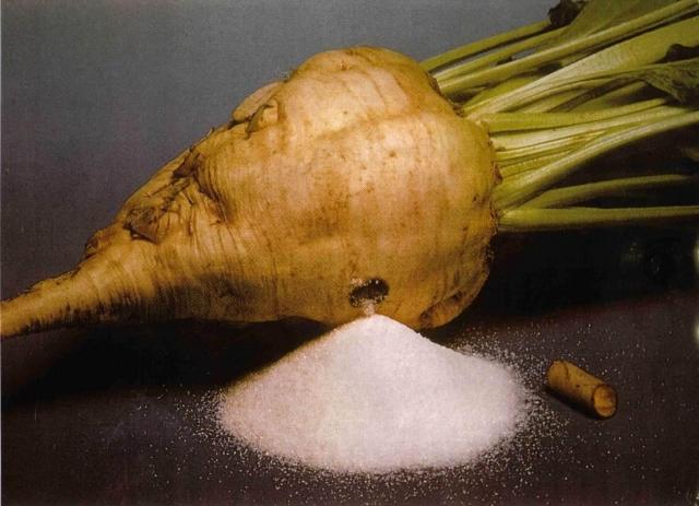 НаКубани началась уборка риса