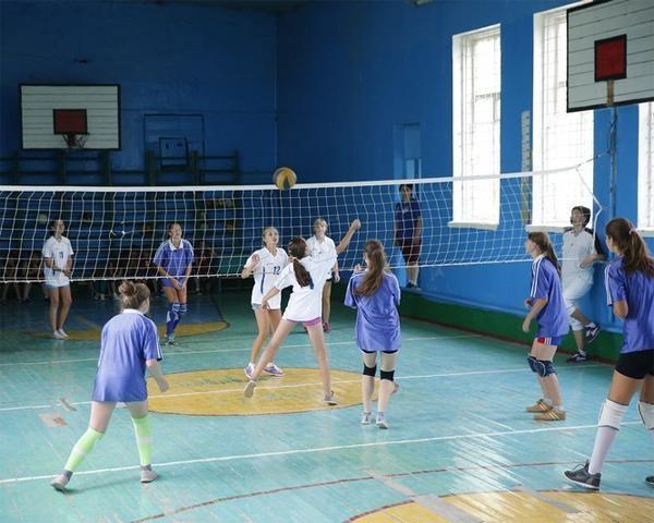 Кубань— лидер в РФ поколичеству детских спортивных школ ицентров спортподготовки