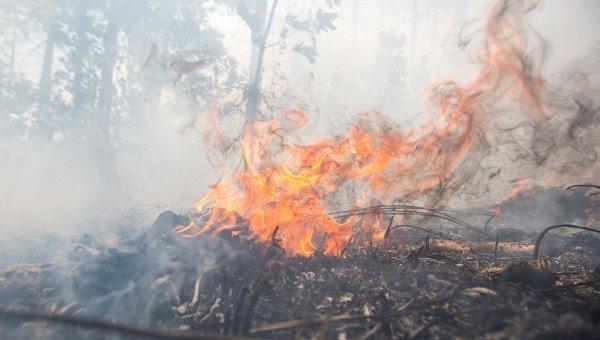 ВСибири потушили как минимум 30 пожаров засутки