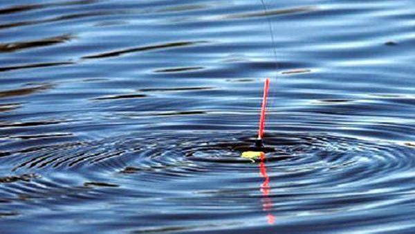 НаСтаврополье рыбак рыбаку грозил веслом наберегу Гока