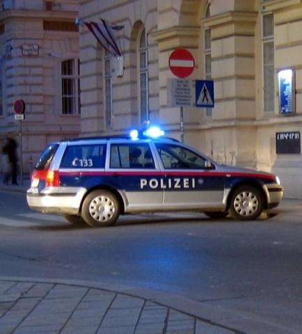 Полицейского вАвстрии отправят втюрьму занацистское приветствие