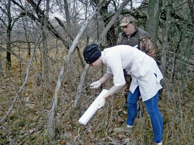 ВРостовской области ветеринары медперсонал привили против бешенства диких животных