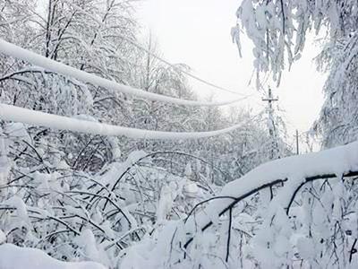 НаКубани без электричества из-за снегопадов остаются около 3,6 тыс. человек