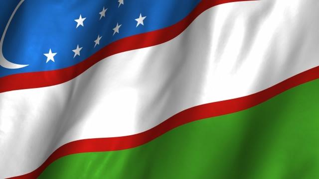Органы внутренних дел Узбекистана полностью готовы обеспечить безопасность в период президентских выборов -- МВД республики