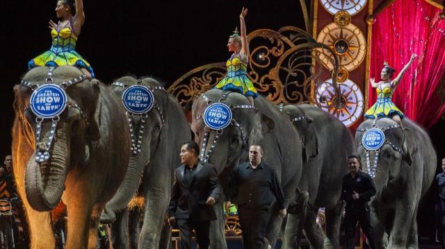 ВСША весной закроется цирк братьев Ринглинг