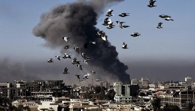 Пентагон начал проверку сообщений ожертвах после авиаудара вМосуле