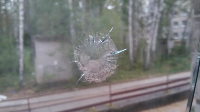 «Томского стрелка» обезвредили женщина-почтальон, велосипедист ипрохожий