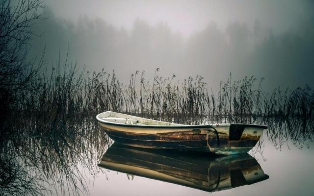 Утопленник-рыбак найден наберегу реки вТульской области