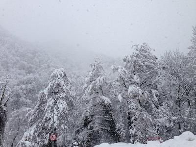 Вгорах Сочи все-таки возможно налипание мокрого снега