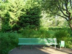 """Пробежка пройдет в рамках городского проекта  """"Физкультура и спорт в парке """".  Принять в ней участие могут вс."""