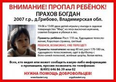 Мальчика во Владимирской области, вероятно, похитили ради выкупа