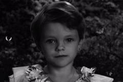 Очевидцы: Пропавшая в Ростовской области 9-летняя Саша Целых жива