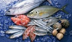 В Россию запрещен ввоз живой рыбы