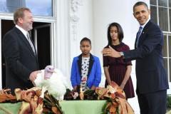 Барак Обама помиловал двух индеек в честь Дня благодарения