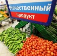 К 2017 году Ставропольский край планирует реализовать в АПК 34 импортозамещающих проекта на 30 млрд рублей