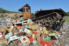 КПРФ предлагает передавать санкционные продукты малоимущим или в ДНР