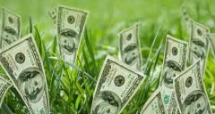 Инвестор в условиях сложившейся экономической ситуации - эксперт
