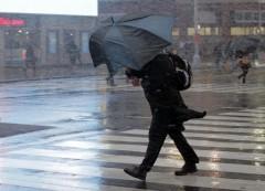 В Москве объявлено штормовое предупреждение по сильному ветру