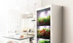 FIBONACCI предлагает потребителям высокотехнологичные домашние агрофермы