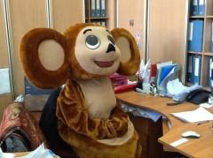 Житель Тихорецком районе мужчина украл костюмы Чебурашки и Медведя