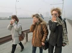 Прокурора Москвы начала проверку в связи с появлением неприятного запаха в городе