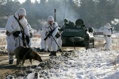 Москва разрешила Киеву провести инспекцию по поводу военной деятельности в Ростовской области