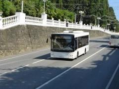 Систему безналичной оплаты проезда опробуют в Сочи уже этой весной