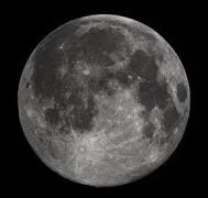 В США решили приготовить пиво на Луне