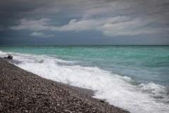Пляжи Сочи презентовали для потенциальных арендаторов