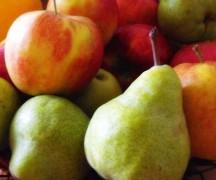 В Майкопе уничтожили 1 центнер яблок и груш из Польши