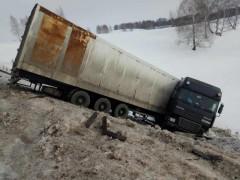 Росприроднадзор примет участие в судьбе тигров из грузовика, попавшего в ДТП под Оренбургом