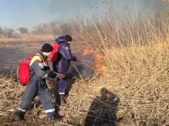 Водные спасатели за сутки ликвидировали два пожара в Багаевском районе Ростовской области
