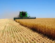 С 2010 года экономические показатели аграрной отрасли Кубани выросли в 2 раза