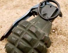 В Лоо обезврежены две боевые гранаты