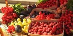 В 2016 году на Ставрополье урожай плодов и ягод вырос на 20%