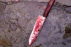 В Калмыкии женщина пырнула ножом своего сожителя-собутыльника