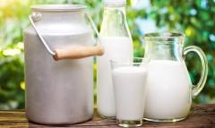 Даниленко: Дефицит молока в России в текущем году сохранится