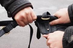 В Сочи 20-летний приезжий вырвал их рук местного жителя сумку с деньгами