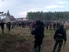 На Украине 200 добытчиков янтаря повздорили с полицейскими