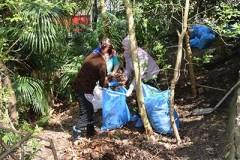 207 тонн мусора собрали сочинцы в ходе Всекубанского субботника