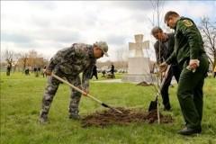На Дону высадили 400 тысяч новых деревьев и кустарников