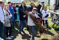 На Кубани стартовала благотворительная акция «Дерево – детям»