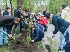 В Чистяковской роще Краснодара высадили 700 новых деревьев и кустарников