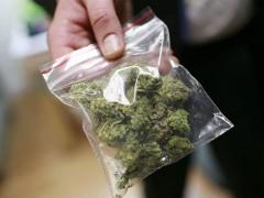 55-летний житель Выселковского района хранил дома пакет с марихуаной