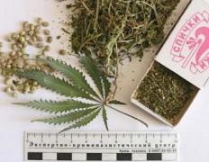 В Калмыкии с начала 2017 года полицейскими выявлено более 140 наркопреступлений