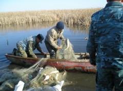 В Ростовской области продолжается операция «Путина-2017»